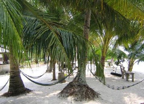 Pulauu Dayang